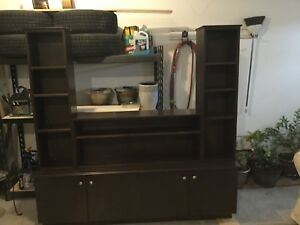 Tv and bookshelf cabinet