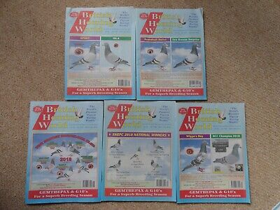 5x British Homing World racing pigeon birds magazines back issue March 2019