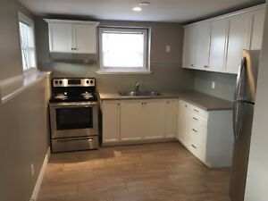 Fully Renovated Lower Level Duplex
