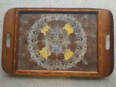 Butteryfly Wing Tray - Wooden Inlayed Frame - Size 515mm x 330 mm approx