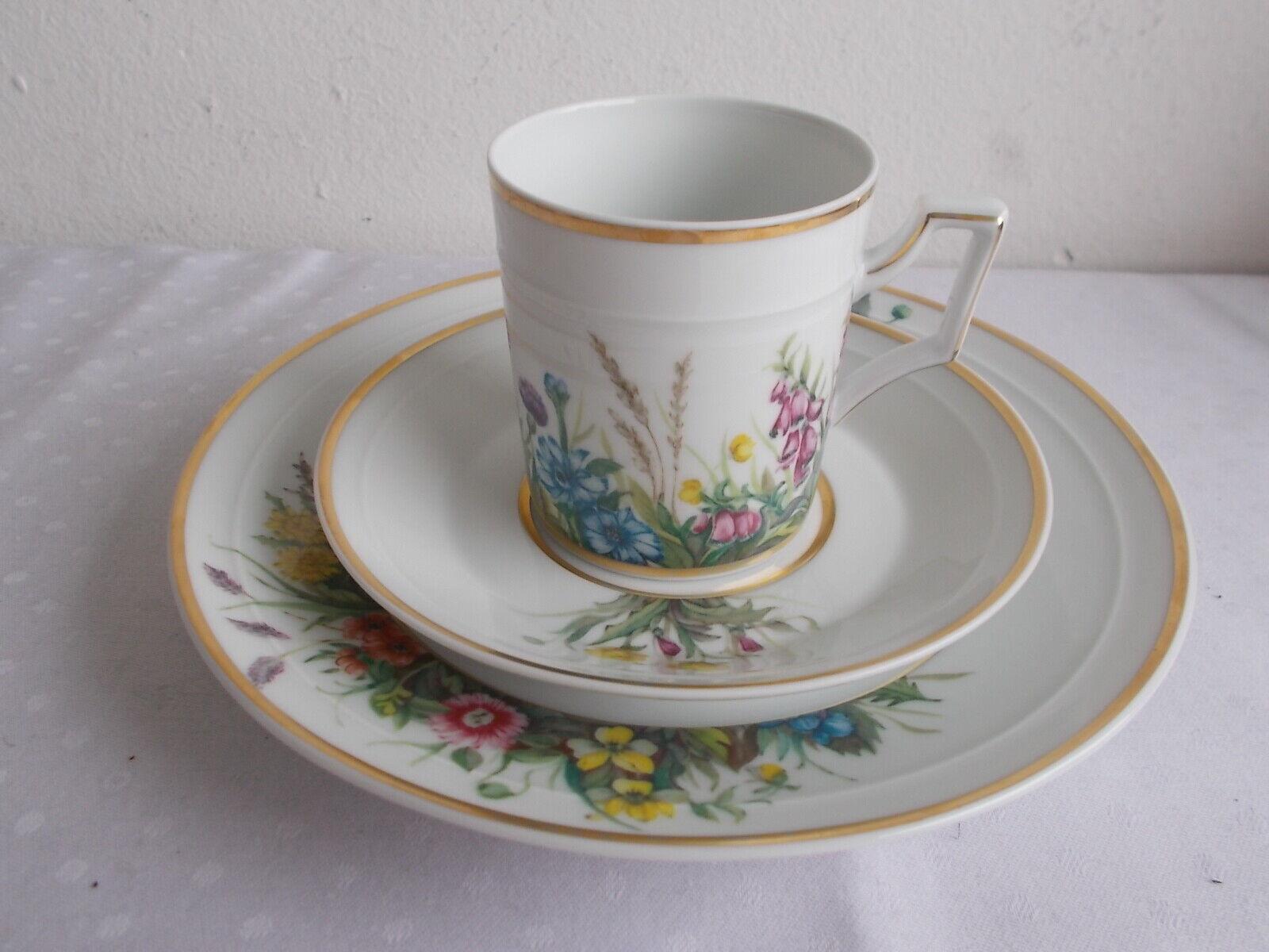 1 Kaffeetasse mit Untertasse . Fürstenberg Herzog Ferdinand Floraison