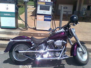 1996 HARLEY DAVIDSON FATBOY CUSTOMED Kandanga Gympie Area Preview