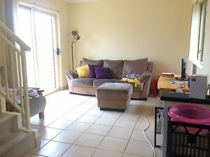 Bright spacious room close to UNSW in Kingsford Kingsford Eastern Suburbs Preview