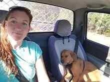 Looking for a rental with yard for myself and my beagle cross dog Broken Hill Central Broken Hill Area Preview