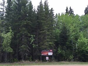Large Beautifully Treed Candle Lake Lot-Walk to 3 Beaches!