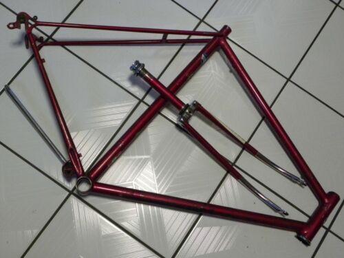 SCHWINN Sports Tourer FRAME & FORK only  CAMPAGNOLO dropouts  BICYCLE  road bike