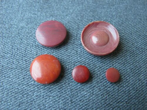 5 Vintage different dyed tagua nut buttons  9764c