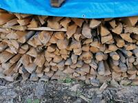 Brennholz Fichte ofenfertig Niedersachsen - Kalefeld Vorschau