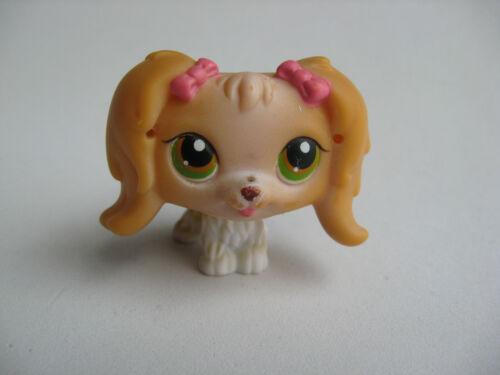 LPS Littlest Pet Shop #79 tan cocker spaniel green eyes