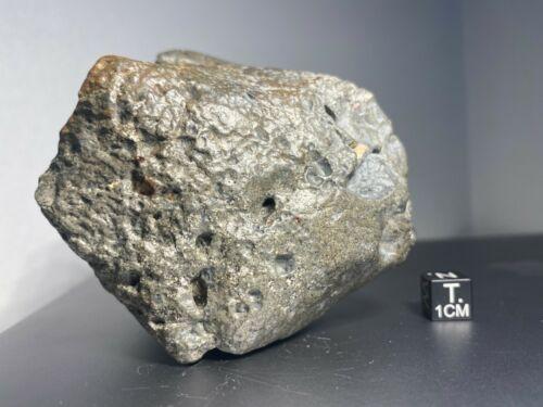 Meteorite - Eucrite- NWA 14131 - 581 grams - Main Mass
