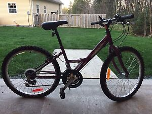 Kid's / Youth Sport Mountain Bike: Supercycle 18 Speed, purple