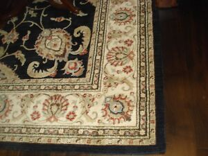 ELTE  Persian rug 10x13