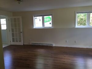 Rent REDUCTION for both Dec and Jan--Large 2 BD apt