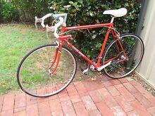 Steele Bishop Pursuit Mk1 12spd classic road bike Payneham Norwood Area Preview