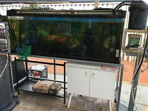Large Aquarium complete system crazy one fifth of costs $625 Beechboro Swan Area Preview