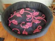 Cat and dog beds and dog chest plate harness Greenslopes Brisbane South West Preview