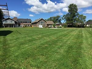 Grass mowing contracts. Booking Now!