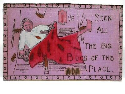 1907 SILK FRONT POSTCARD I'VE SEEN ALL THE BIG BUGS OF THIS PLACE