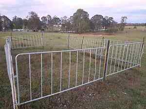 Sheep Yard Panels Gumtree Australia Free Local Classifieds