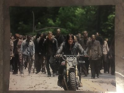 Norman Reedus hand signed Autograph photo Walking Dead