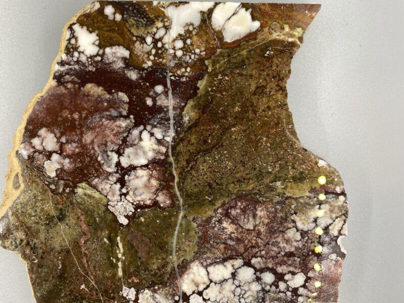 """Wild Horse Magnesite Slab - 5 1/2"""" x 4 3/4"""" - 219grams"""