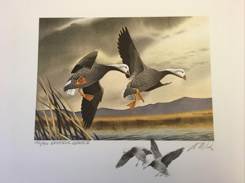 """Arthur M Cook 1972 Fed Print """"Emperor Geese II"""" Sec. Ed. S/N 186/900 Remarqued"""