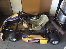 Monaco Go Kart 100cc Sinnamon Park Brisbane South West Preview