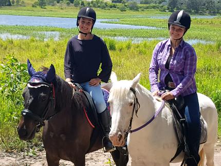 Natural Horsemanship Lessons & Training