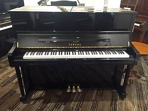 **BRAND NEW** Yamaha U1JPE - Delivered, Tuned & 15Yr Warranty Norwood Norwood Area Preview