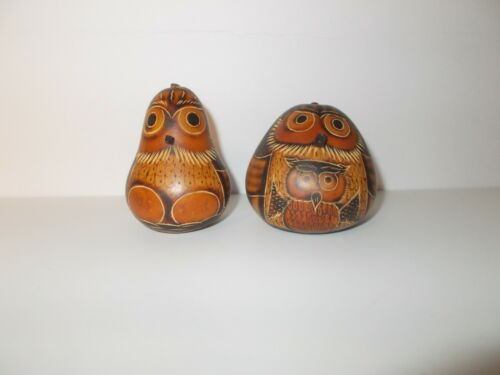 Owl Bird Gourd Rattle Folk Art Peru Hand Painted Set of 2
