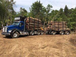 Clean firewood all hardwood