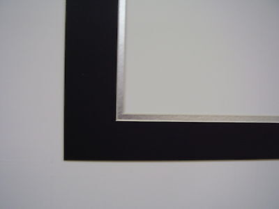 Picture Frame Double Mat 16x20  for 11x17 photo Black with silver covid 19 (Double Picture Mats Matting coronavirus)