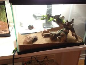 20 gallon reptile tank with lid