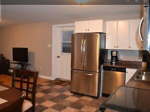2 bedroom above ground basement apartment for rent.