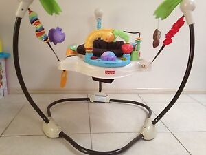 Fisher Price Luv U zoo jumperoo Bella Vista The Hills District Preview
