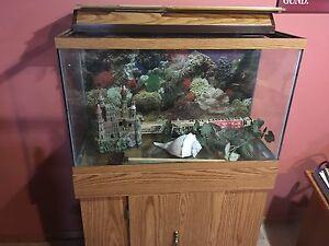 Great condition 29 gallon fish tank for sale.