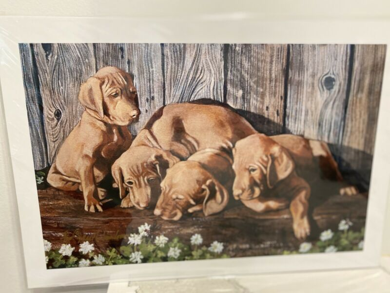 Vizsla Puppies Ld Edition Signed  11x 14 Print By Van Loan