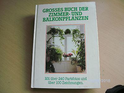 Großes Buch der Zimmer und Balkonpflanzen - 298 Seiten - nuwertig