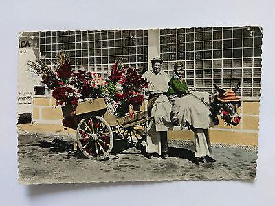 Estoril Portugal Vintage colour Postcard c1960