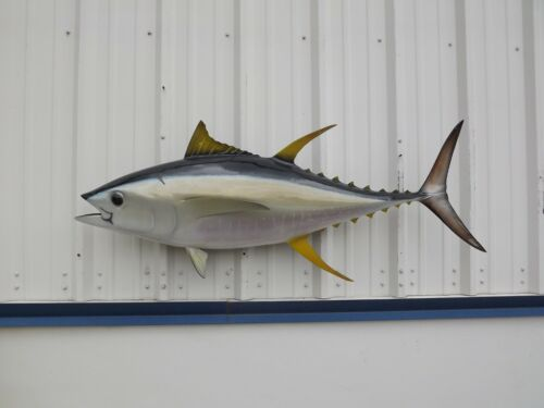 """55"""" Yellowfin Tuna Two Sided Fish Mount Replica - 10 Business Day Production"""