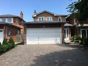 Markham Road / Steels Ave house for rent