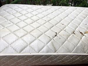 free mattress - 3xSingle, 1xQueen Burwood Burwood Area Preview