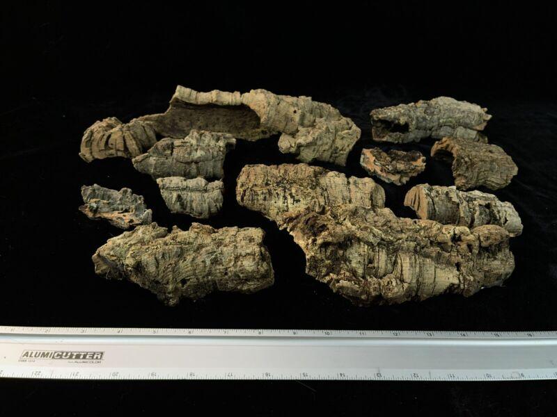 Virgin Cork Orchid Mounts 5qt (1.25 gal) bags Vivarium decor Assorted Sizes