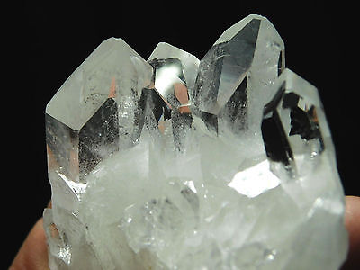 FIVE! Super Translucent AAA Quartz Crystals in a Cluster Found in Brazil 162gr