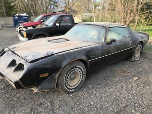 Rare barn find 1981 trans am 4 speed bandit car with AC