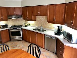 Kitchen cabinets and pantry for sale - excellent condition