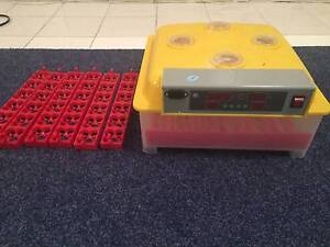60 Egg Incubator + 144 Qail Egg Adapters Narre Warren North Casey Area Preview
