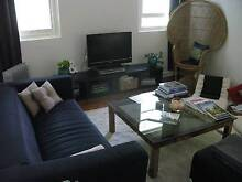 SUBLET:  Lovely Furnished Unit close to Marrickville Rd Shops Marrickville Marrickville Area Preview