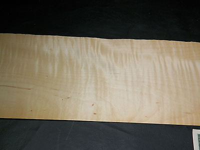 Curly Maple Raw Wood Veneer Sheets 5 X 53 Inches 142nd   4730-24