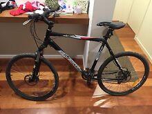 Exc. cond Avanti Ridge Rider X-One - XL size mountain bike Kaleen Belconnen Area Preview